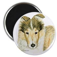 Sheltie Puppy Magnet