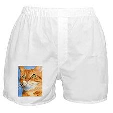 Red / Orange Tabby Boxer Shorts