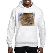 Persian Cat Hoodie