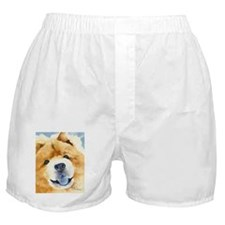 Chow Chow 2 Boxer Shorts