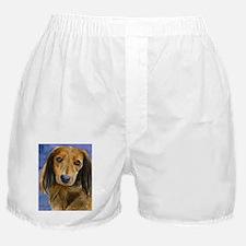 Dachshund 2 Boxer Shorts