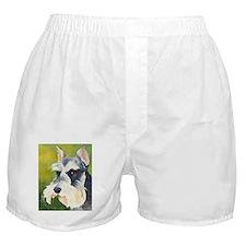 Miniature Schnauzer 3 Boxer Shorts