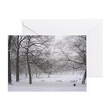 Winter Picnic Greeting Card