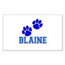 Blaine Rectangle Decal