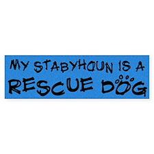 Rescue Dog Stabyhoun Bumper Bumper Sticker