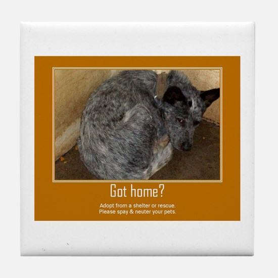 Got Home? Tile Coaster