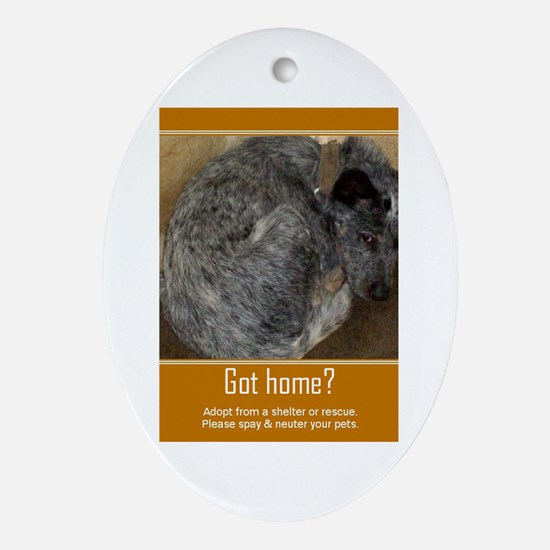 Got Home? Oval Ornament