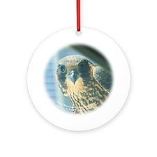 E-401 Espie Thru Looking Glass Ornament (Round)