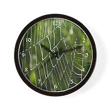 Glistening Spider Web Wall Clock