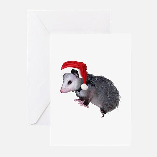 Santa Possum Greeting Cards (Pk of 10)