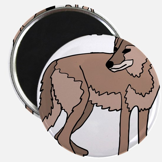 Coyote Magnets
