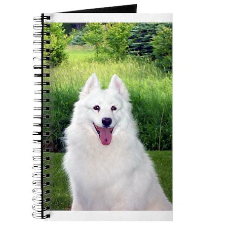 Smilin' Sammy Journal