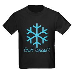 Got Snow? - 2 T