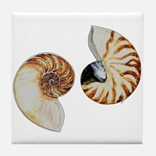 Chambered Nautilus Tile Coaster