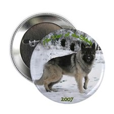 "Year of the Shiloh 2.25"" Button"