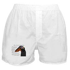 BT Weiner Brain II Boxer Shorts