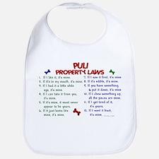 Puli Property Laws 2 Bib
