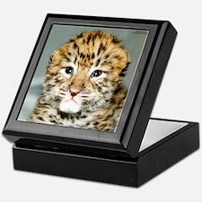 Amur Leopard cub Keepsake Box