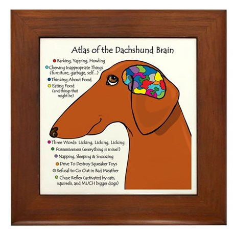 Weiner Brain (red) Framed Tile