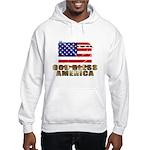 American Eagle Patriotic Hooded Sweatshirt