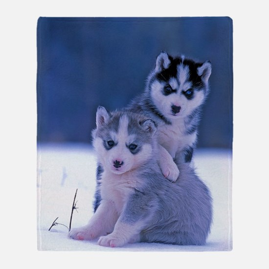 Cute Siberian husky Throw Blanket