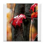 Red Leaf Tile Coaster