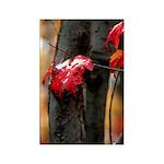 Red Leaf Rectangle Magnet