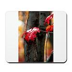 Red Leaf Mousepad