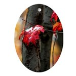 Red Leaf Oval Ornament