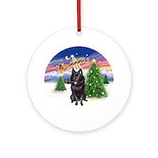 Take Off (C) & Schipperke Ornament (Round)