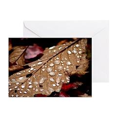 Water Drop Leaf Greeting Cards (Pk of 10)