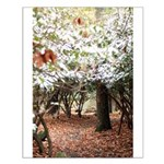 Enchanted Forest Small Poster