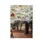 Enchanted Forest Rectangle Magnet (100 pack)