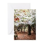 Enchanted Forest Greeting Cards (Pk of 20)