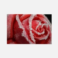 Frosted Rose Rectangle Magnet