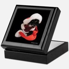 Charistmas Santa Cat Keepsake Box