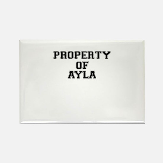 Property of AYLA Magnets