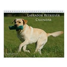 Labrador Retriever Wall Calendar