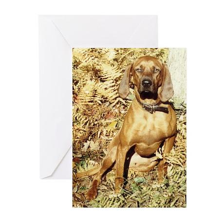 Redbone Greeting Cards (Pk of 10)