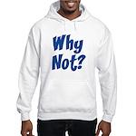 Why Not? Hooded Sweatshirt