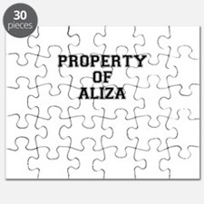 Property of ALIZA Puzzle