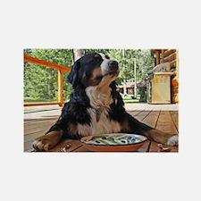 Cute Bernese mountain dog puppy Rectangle Magnet