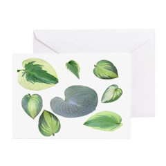 Hosta leaves Greeting Cards (Pk of 10)