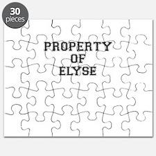 Property of ELYSE Puzzle