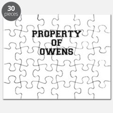 Property of OWENS Puzzle