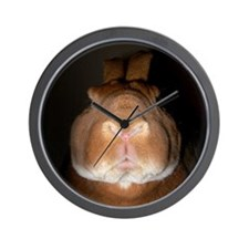 Disapproving Rabbits Wall Clock