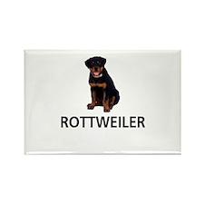 Rottweiler Rectangle Magnet (100 pack)