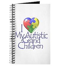 My Autistic Grandchildren Journal