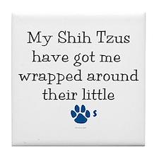 Wrapped Around Their Paws (Shih Tzu) Tile Coaster