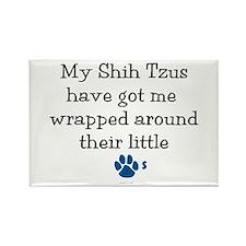 Wrapped Around Their Paws (Shih Tzu) Rectangle Mag